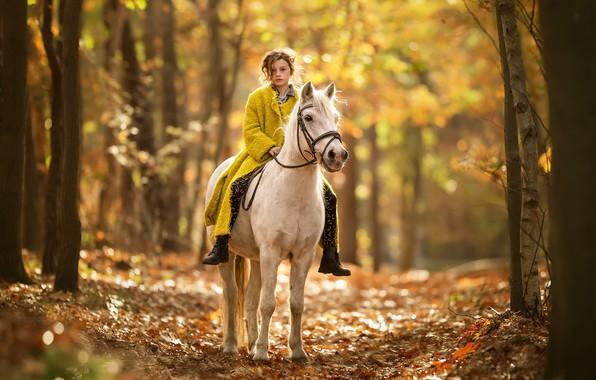 Picture autumn, nature, horse, girl