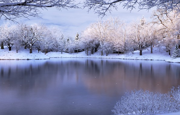 Picture Nature, Winter, Snow, Lake, Mood
