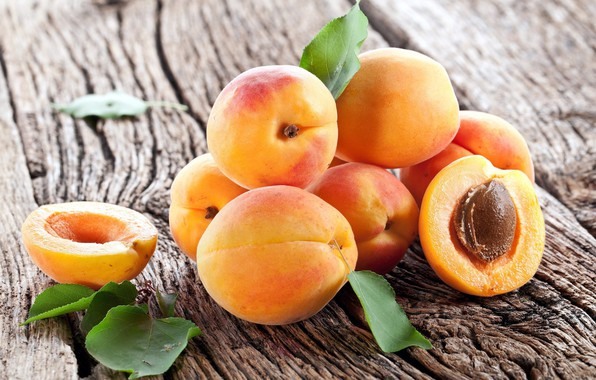 Picture wood, apricots, the ripe fruit