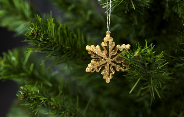 Picture decoration, tree, New Year, Christmas, Christmas, New Year, decoration, Merry, fir tree