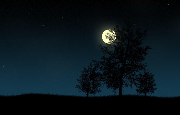 Picture grass, stars, trees, night, the moon