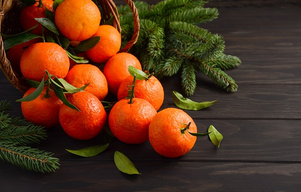 Picture decoration, New Year, Christmas, Christmas, wood, fruit, New Year, tangerines, decoration, tangerine, Merry, fir tree, …