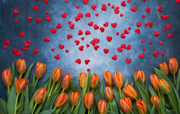 Picture hearts, tulips, red, flowers, romantic, hearts, tulips