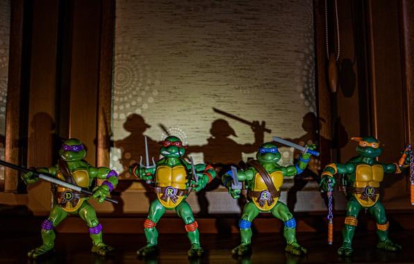 Picture toy, cartoon, shadow, figures, Donatello, Michelangelo, turtles, mutant ninja turtles, TMNT, Leonardo, teenage mutant ninja …
