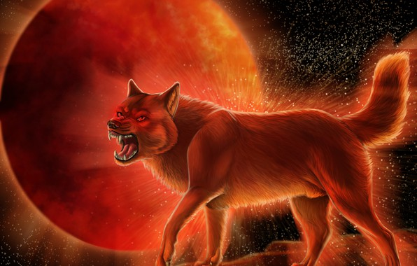 Picture wolf, predator, wool, mouth, fangs, grin, wolf, blood Moon, mater