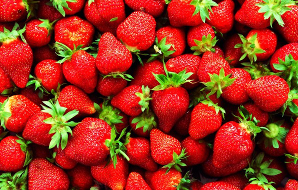 Picture berries, strawberry, a lot, ripe