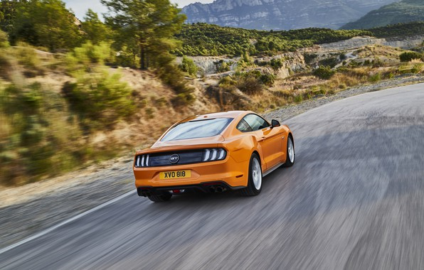 Picture road, orange, Ford, rear view, 2018, fastback, Mustang GT 5.0