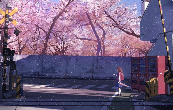 Picture umbrella, Japan, schoolgirl, backpack, the barrier, cherry blossoms, crosswalk, semaphore, concrete wall, railway tracks, the …