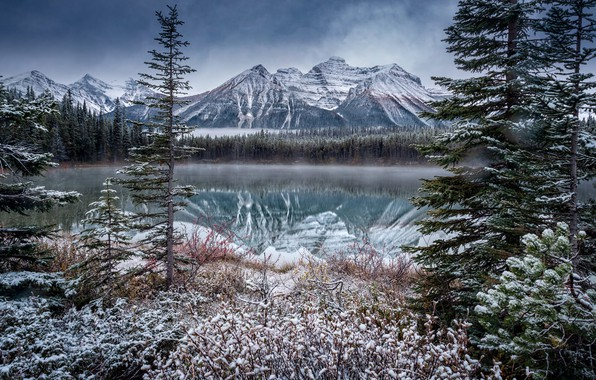 Picture winter, snow, landscape, mountains, nature, lake, Canada, Banff National Park, forest, national Park, reserve, Rocky …
