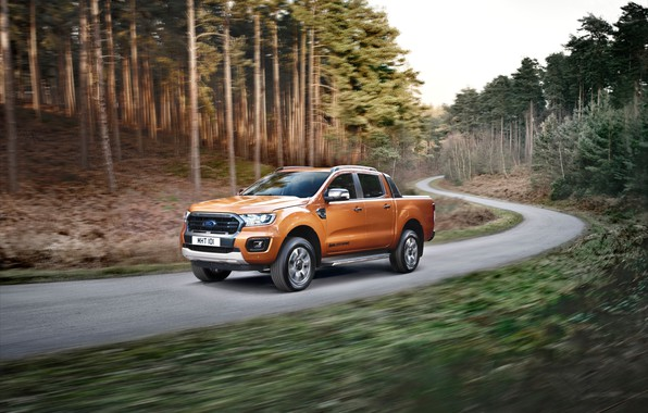 Picture road, machine, forest, trees, movement, Ford, turn, pickup, Ranger Wildtrak
