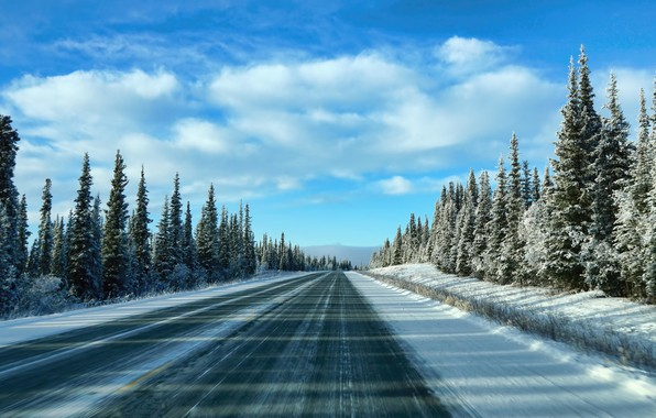 Picture winter, road, the sky, snow, trees, morning, ate, sky, trees, winter, clouds, snow, morning, spruce