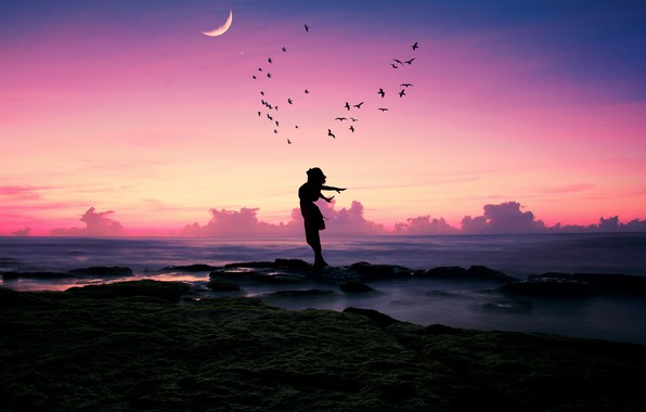 Picture sea, beach, girl, happiness, sunset, birds, pose, stones, mood, the moon, shore, pack, a month, ...