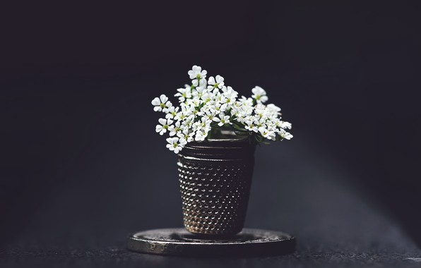 Picture flowers, background, thimble