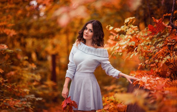 Picture autumn, look, leaves, girl, Park, photo, sweater, Xenia, Sergey Shatskov