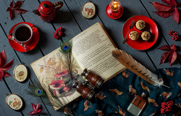 Picture leaves, style, berries, tea, candle, feathers, kettle, Cup, binoculars, book, still life, cupcakes