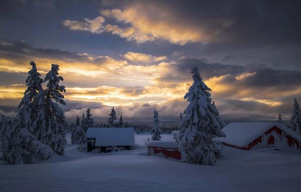 Picture winter, the sky, clouds, snow, trees, nature, fog, dawn, home, morning, ate, Jørn Allan Pedersen, …
