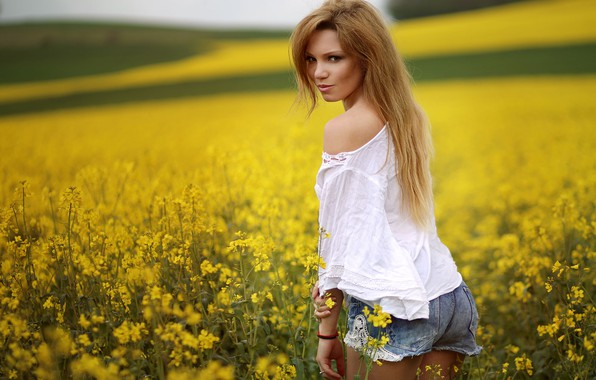 Picture field, summer, girl, blouse