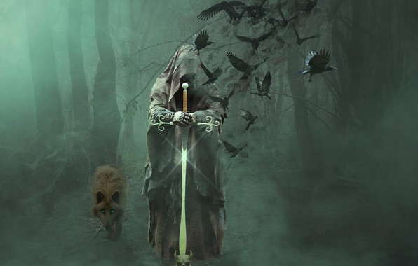 Picture forest, trees, birds, fog, death, wolf, sword, vestments