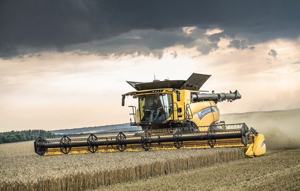 Picture The sky, Field, 2018, Harvester, New Holland, Psenica, New Holland CR10.90 Revelation