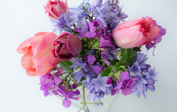 Picture bouquet, tulips, bells, light background, forget-me-nots, honesty