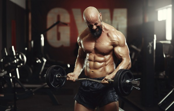 Picture pose, beard, muscle, muscle, rod, press, training, gym, bodybuilder, training, abs, bodybuilder