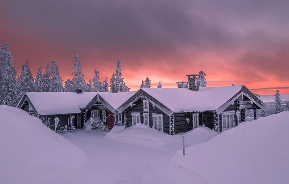 Picture winter, snow, trees, landscape, nature, dawn, home, morning, ate, the snow, Jørn Allan Pedersen, Allan …