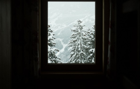 Picture winter, snow, trees, room, view, slope, window, trees, winter, view, snow, slope, window, room