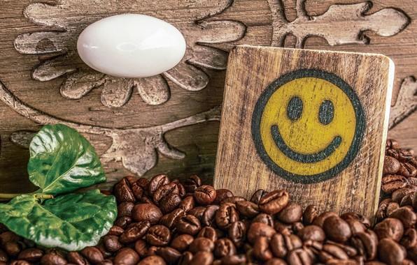 Picture coffee, grain, plate, Silic