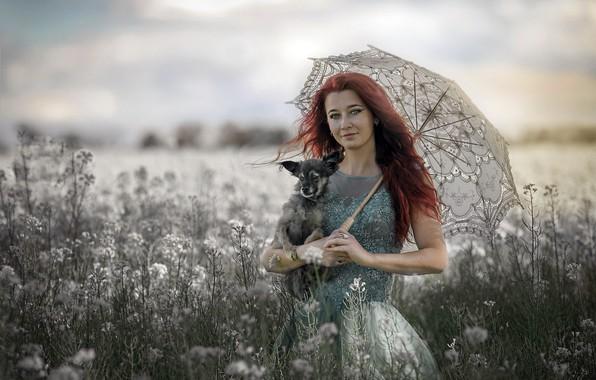 Picture dog, umbrella, lady