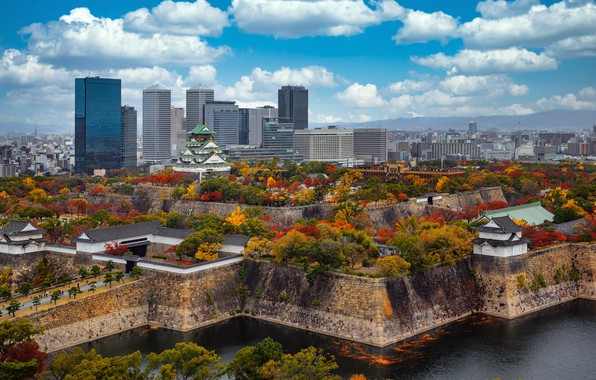 Picture trees, Park, castle, building, Japan, Japan, skyscrapers, Osaka, Osaka, ditch, Osaka Castle, Osaka Castle Park