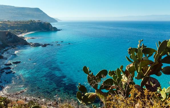 Picture rock, sky, sea, landscape, Italy, plants, Calabria, Capo Vaticano, landscape beautiful, prickly pears