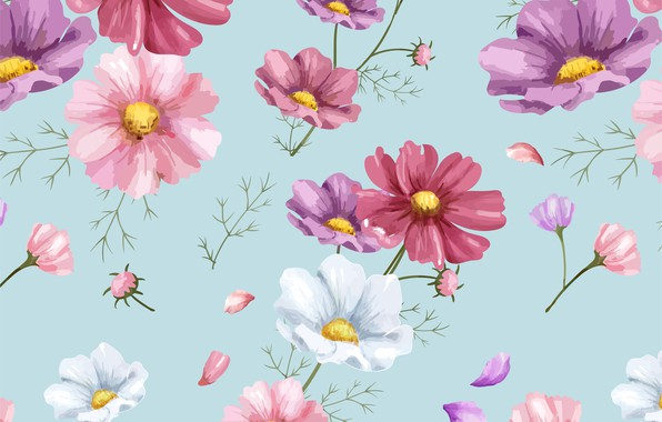 Picture flowers, background, figure, colorful, ornament, pink, flowers, floral, background, pattern, cosmos, floral