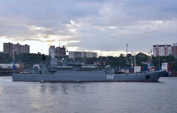 Picture ship, large, landing, Oslyabya