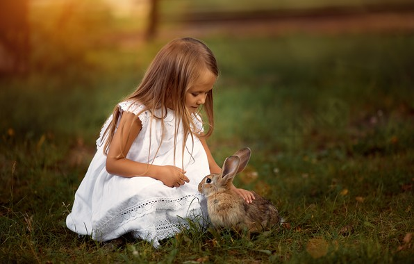Picture grass, nature, animal, hare, dress, girl, child