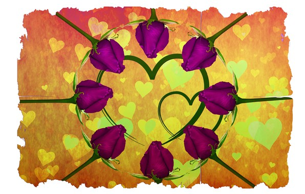 Picture feelings, roses, hearts, Valentine's Day