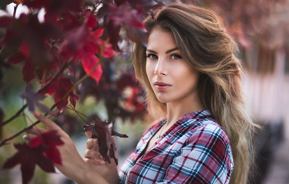 Picture look, leaves, model, hair, Girl, figure, shirt, shoulder, Vanya Tufkova
