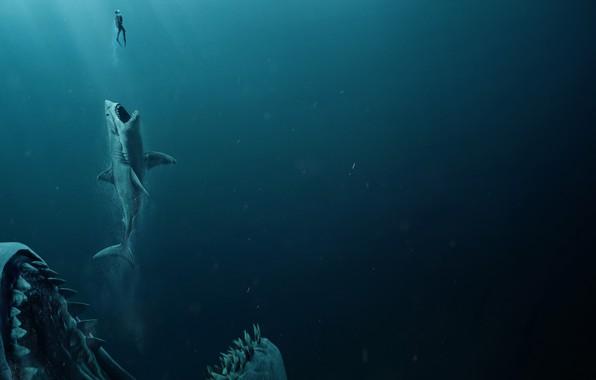 Picture man, shark, jaws, The meg, Megalodon