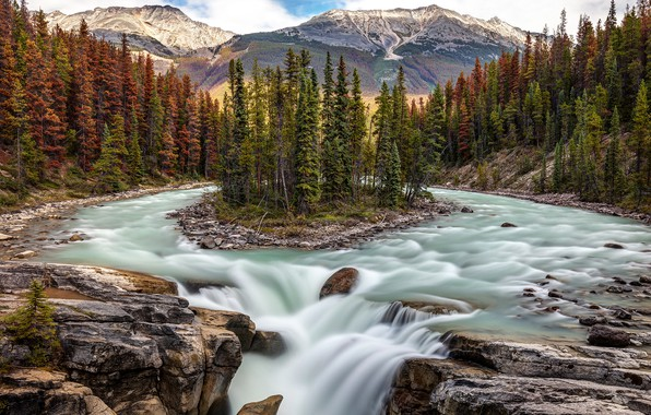 Picture forest, trees, river, waterfall, Canada, Albert, Alberta, Canada, island, Jasper National Park, Jasper national Park, …
