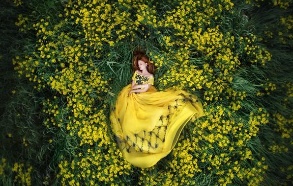 Picture flowers, nature, Girl, dress, lies, Maria Lipina