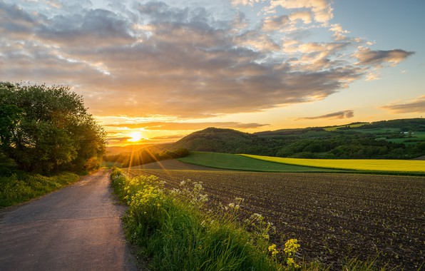 Picture road, field, sunset, Germany