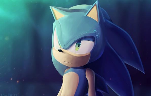 Picture Sonic, Art, Digital Art, Sonic, Fan Art, Sonic The Hedgehog, ImDatRabbitz, by ImDatRabbitz