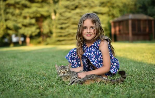 Picture cat, grass, girl, bokeh, Ivan Niznicki