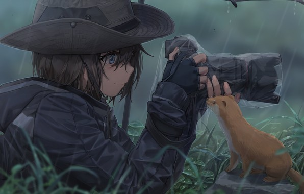 Picture girl, photo, rain, hat, umbrella, anime, art, the camera, animal, Shooting