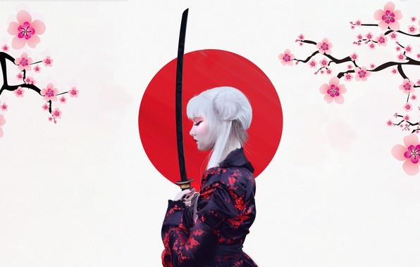 Picture The sun, Girl, Minimalism, Sakura, Japan, Sword, Background, Japan, Japanese, Art, Sakura, Katana, Illustration, Characters, …