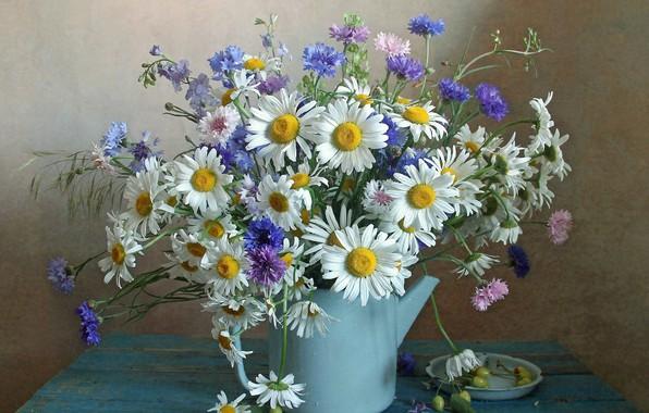 Picture chamomile, bouquet, kettle, cornflowers