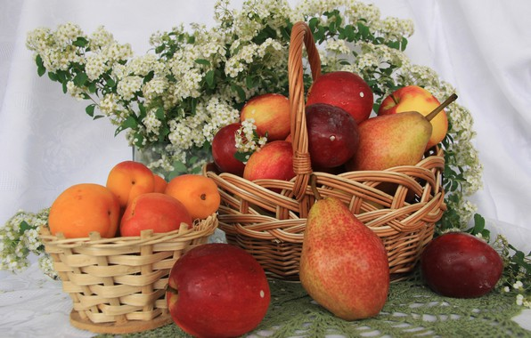 Picture flowers, table, apples, fruit, still life, pear, tablecloth, apricots, tulle, basket