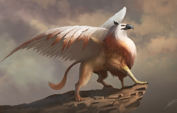 Picture fantasy, wings, artwork, fantasy art, creature, mythology, Griffin