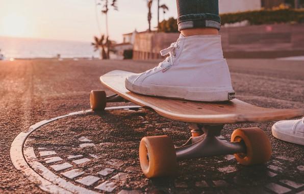 Picture road, sea, freedom, palm trees, heat, sneakers, skate, skateboard