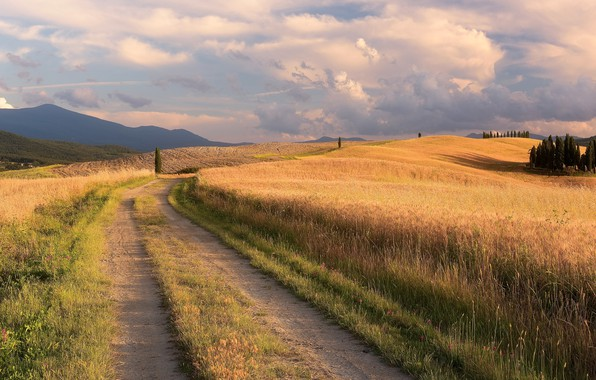 Picture road, field, summer, grass, clouds, trees, mountains, the way, hills, dal, Italy, haze, track, ears, ...