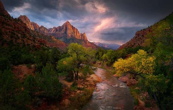 Picture the sky, clouds, trees, mountains, clouds, stream, stones, rocks, canyon, Utah, USA, Zion National Park, …